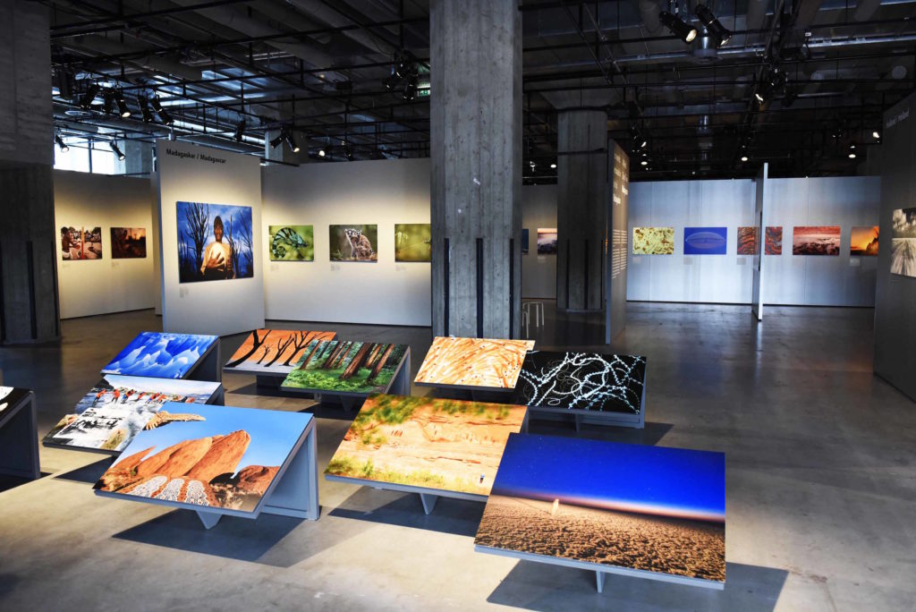 frans-lanting-into-afrika-expositie