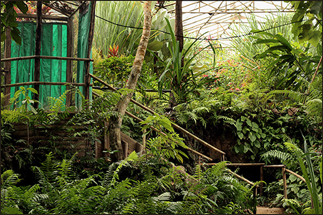 laos-luang-prabang-vlindertuin