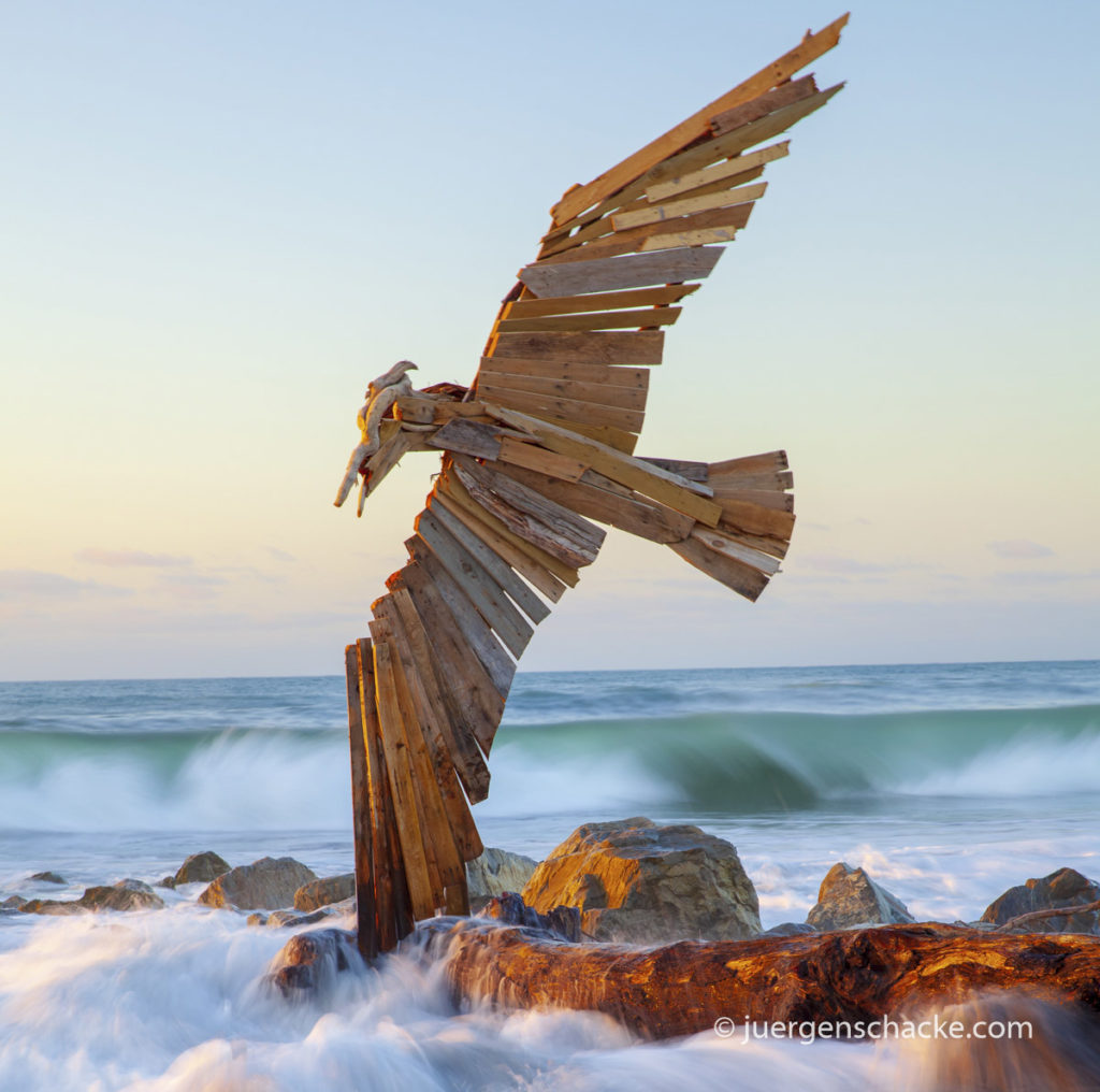 nieuw-zeeland-hokitika-drift-wooden-bird