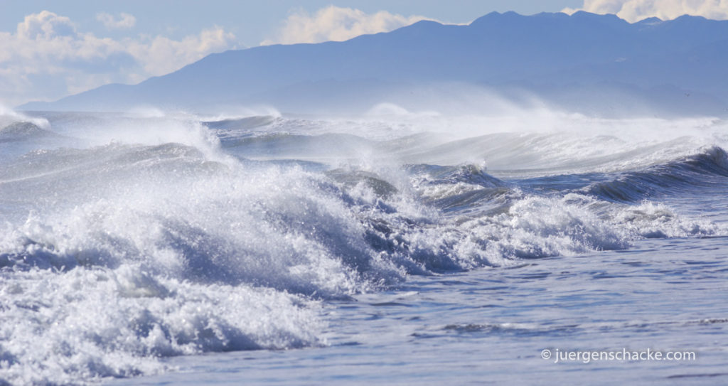 nieuw-zeeland-shorebreak