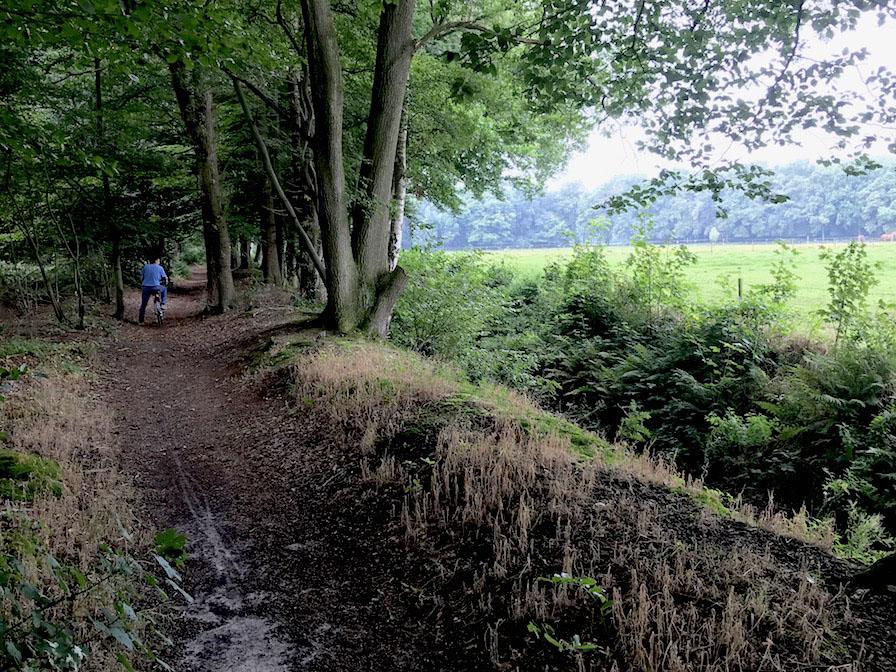 buitenleven-landgoed-verwolde-fietsen-bos