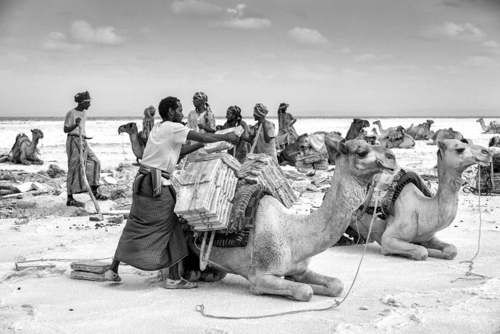 ethiopië-lake-asale-afar-kamelen-laden