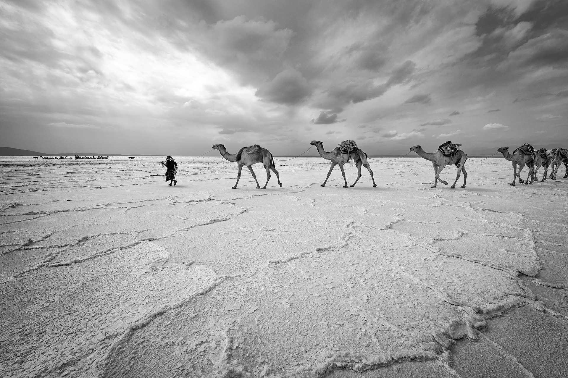 ethiopië-lake-asale-afar-zout-caravaan