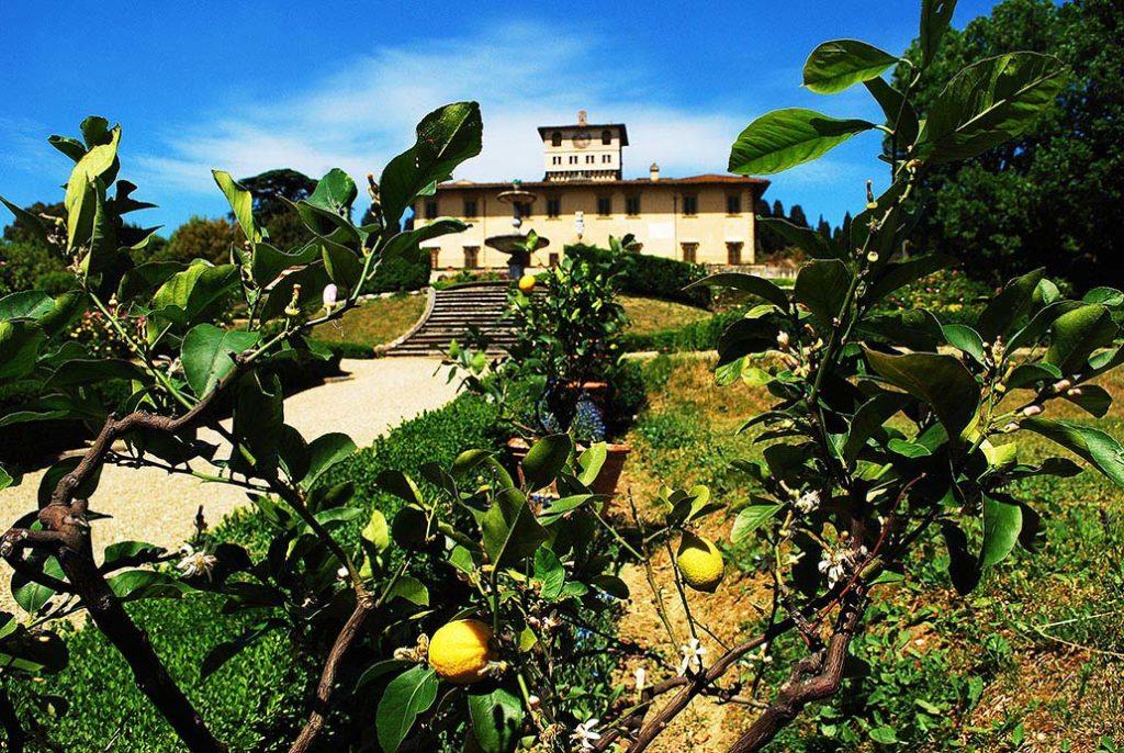 florence-villa-petraia-fruitbomen