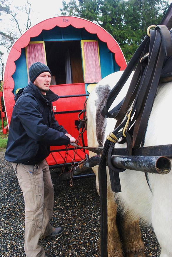 ierland-county-wicklow-huifkar-buster
