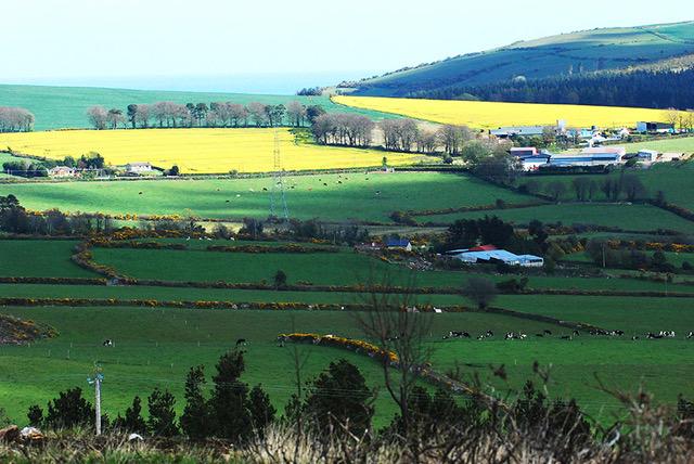 ierland-county-wicklow-huifkartocht-uitzicht
