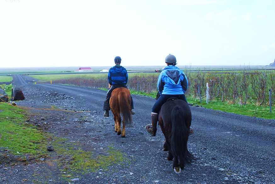 ijsland-hella-vik-paardrijden-onderweg