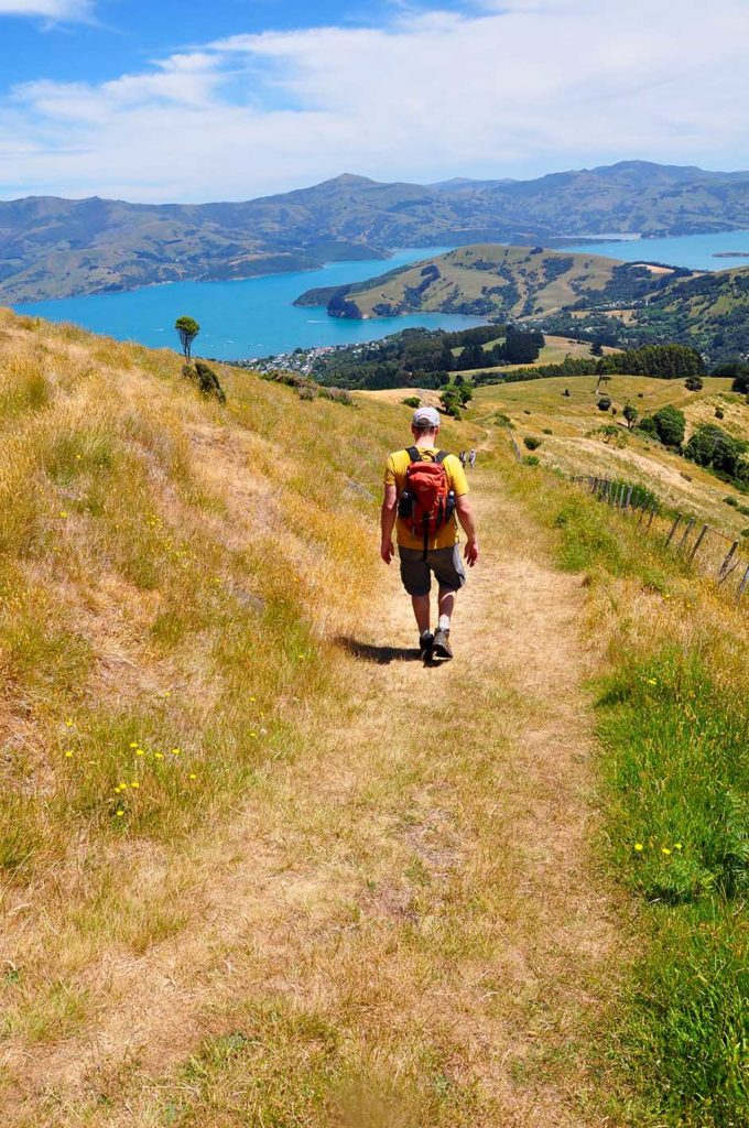 nieuw-zeeland-purple-peak-hike-baai