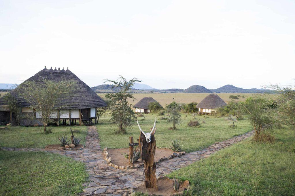 oeganda-kidepo-apoka lodge-bungalow's