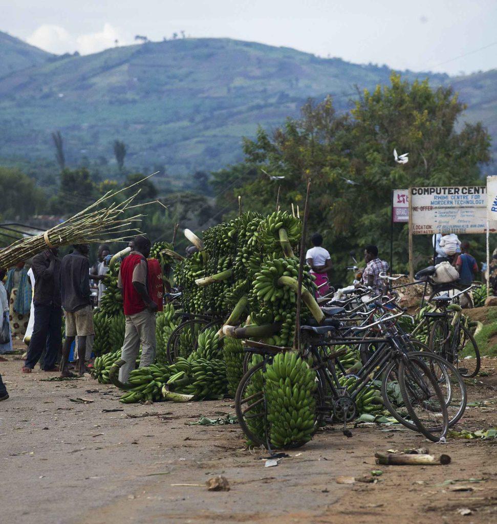 oeganda-matoke-markt