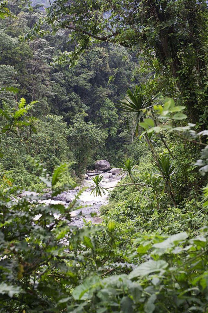 oeganda-rwenzori-uitzicht-iriviertje