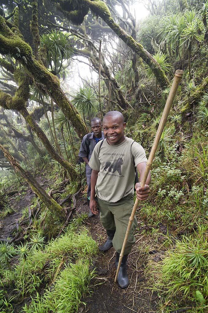 oeganda-virunga-muhavura-hike-rangers