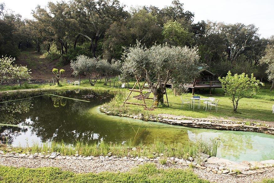 portugal-algarve-ecotoerisme-figueirinha