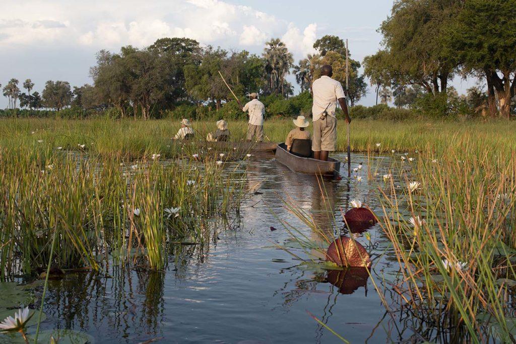 botswana-okavango-mokorro-trip