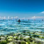 heroes-of-the-sea-zanzibar-vrouwen-vissen