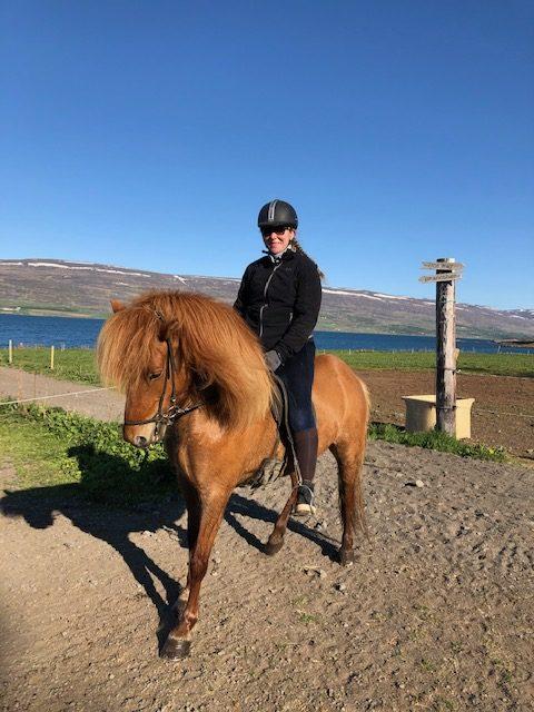 ijsland-hella-vik-angelique-paardrijden