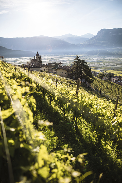 zuid-tirol-wijn-route-tramin