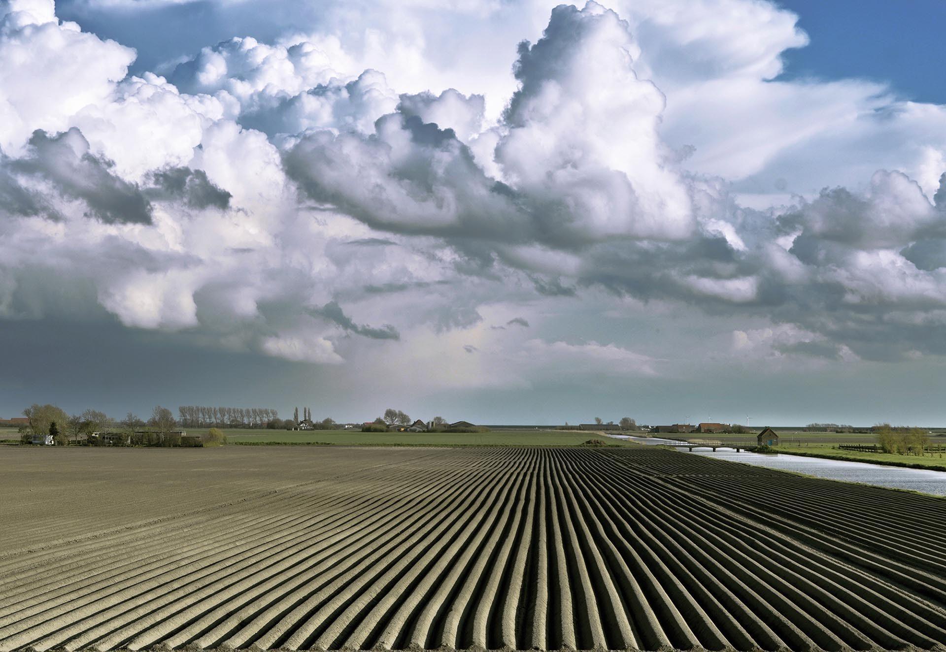 zeeland-aardappelvelden-delingsdijk