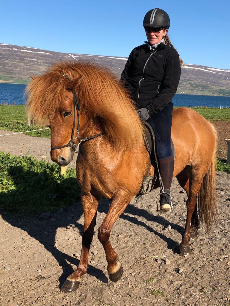 noord-ijsland-paardrijden-angelique-gauksmýri