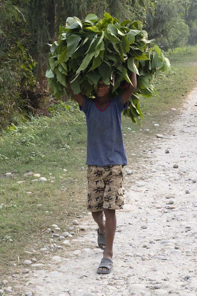 nepal-dalla-homestay-jongen
