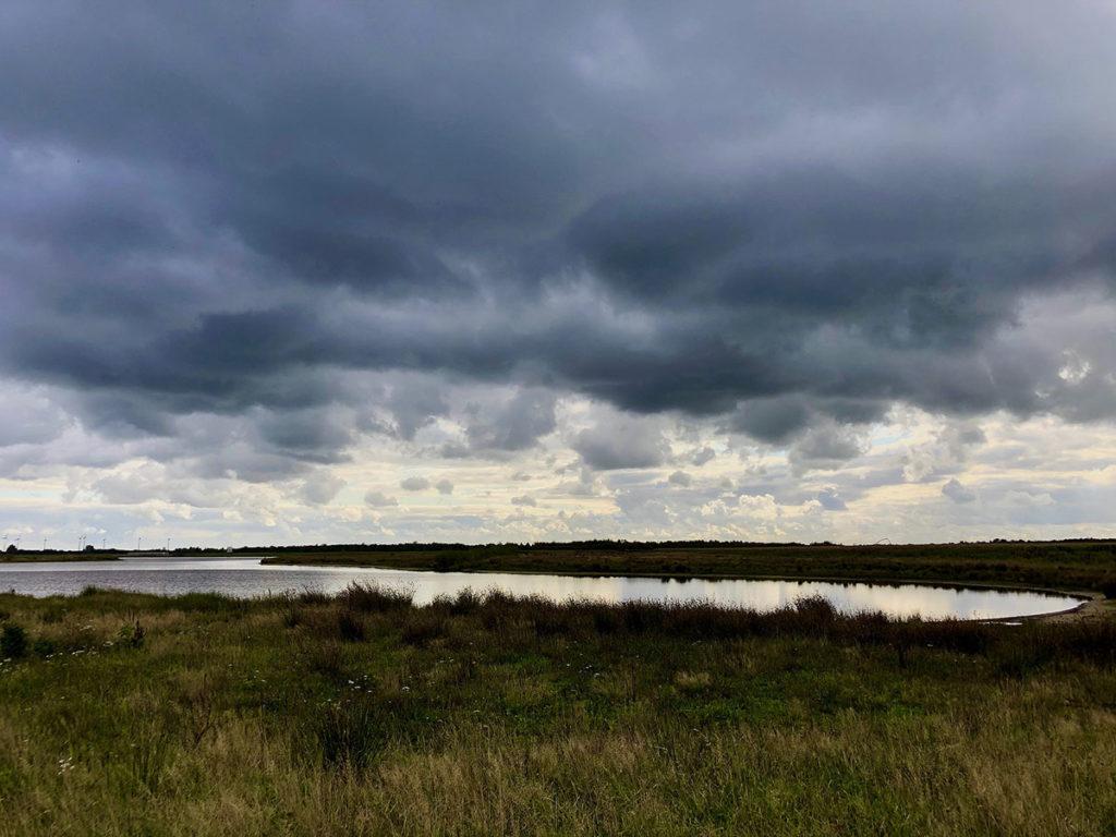 bargerveen-natuurpark moor-waterbekkens-drenthe