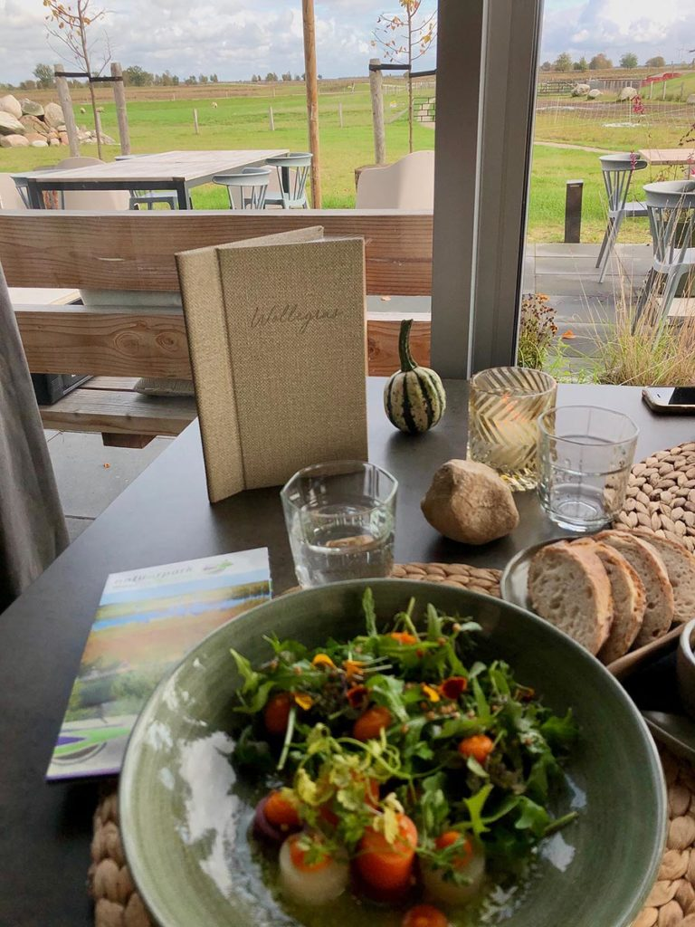 bargerveen-restaurant wollegras-lunch-drenthe