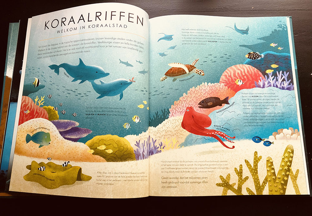 koraalriffen-blauwe-planeet-bbc-lemniscaat