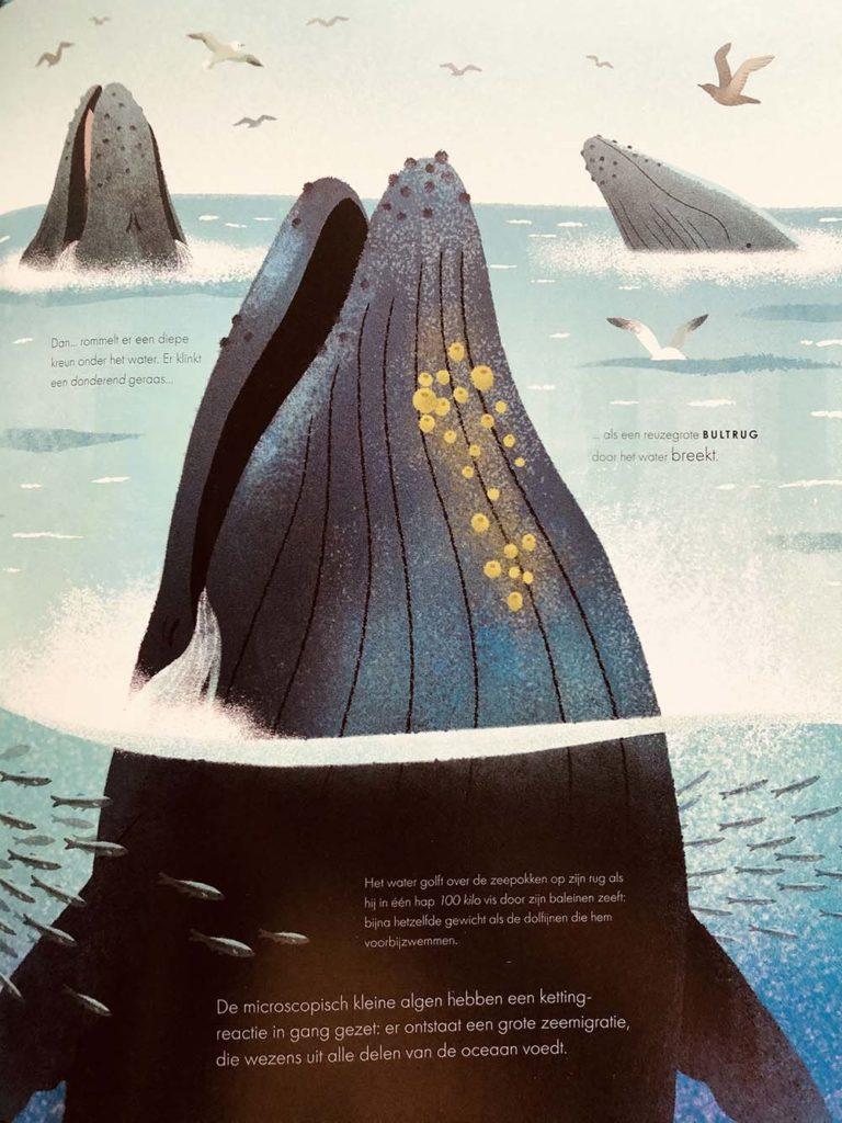 feestmaal-walvis-bp-bbc