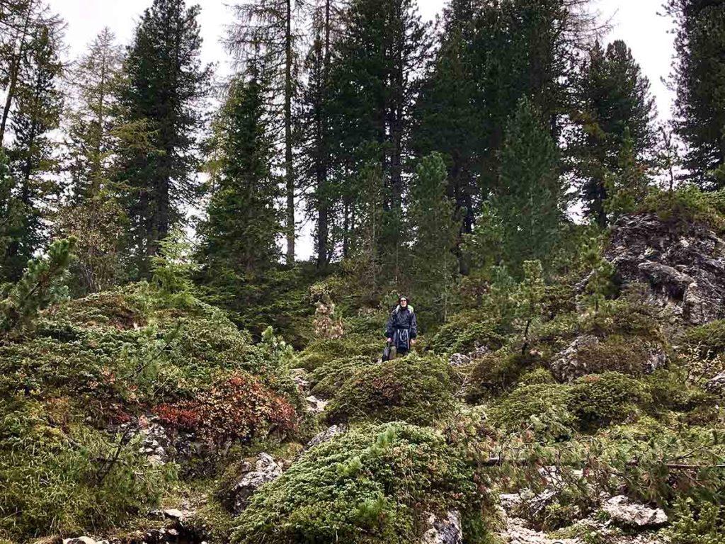 Dolorama-trail-dolomieten-bos-etappe3